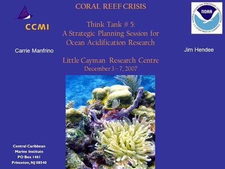 CORAL REEF CRISIS Think Tank # 5: A Strategic Planning Session for Ocean Acidification Research Little Cayman Research Centre December 3 – 7, 2007 Central.