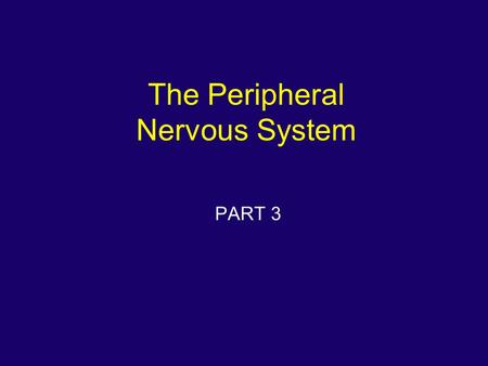 The Peripheral Nervous System PART 3. Peripheral Nervous System.