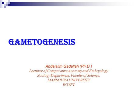 Gametogenesis Abdelalim Gadallah (Ph.D.) Lecturer of Comparative Anatomy and Embryology Zoology Department, Faculty of Science, MANSOURA UNIVERSITY EGYPT.