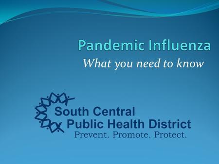 disease essay influenza student
