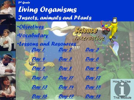 2nd Grade Living Organisms Insects, animals and Plants
