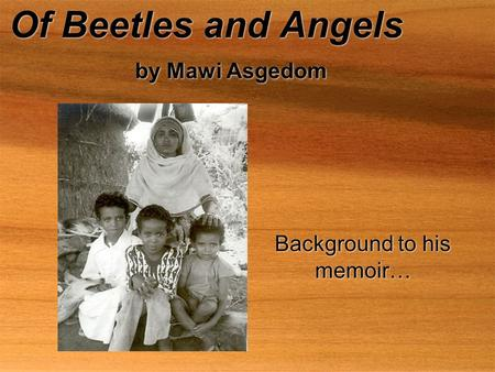Of Beetles and Angels by Mawi Asgedom