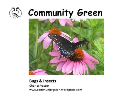 Community Green Bugs & Insects Charles Vasser www.communitygreen.wordpress.com.
