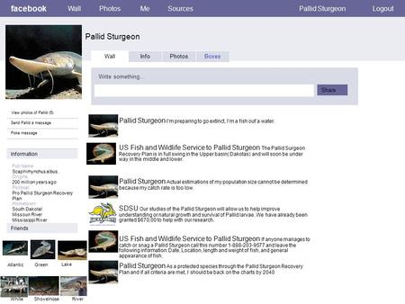 Facebook Pallid Sturgeon WallPhotosMeSourcesPallid SturgeonLogout View photos of Pallid (5) Send Pallid a message Poke message Wall InfoPhotosBoxes Write.