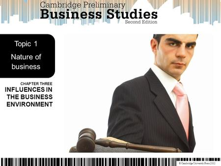 © Cambridge University Press 2012 CHAPTER THREE INFLUENCES IN THE BUSINESS ENVIRONMENT Topic 1 Nature of business.