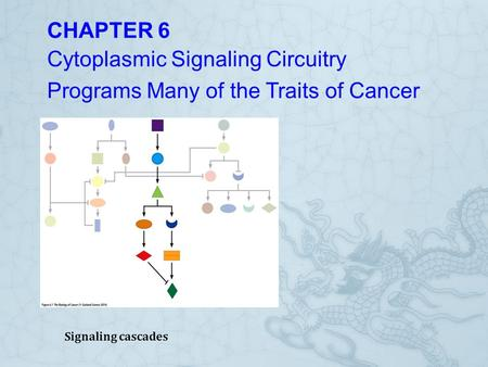 Cytoplasmic Signaling Circuitry Programs Many of the Traits of Cancer