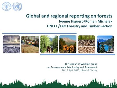 Global and regional reporting on forests Ivonne Higuero/Roman Michalak UNECE/FAO Forestry and Timber Section 16 th session of Working Group on Environmental.