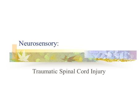 Neurosensory: Traumatic Spinal Cord Injury. A. Pathophysiology/etiology Normal spinal cord as it relates to SCI Spinal cord begins at the foramen magnum.