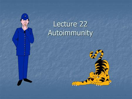 Lecture 22 Autoimmunity. Autoimmune Disease Self tolerance is lost Self tolerance is lost Specific adaptive immune responses mounted against self antigens.