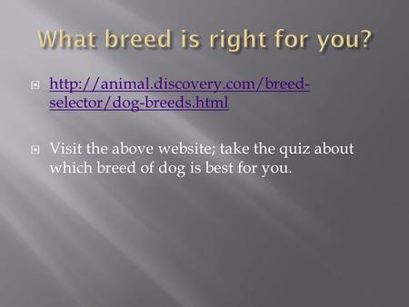   selector/dog-breeds.html  selector/dog-breeds.html  Visit the above website; take.