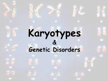 Karyotypes & Genetic Disorders