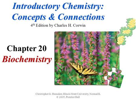 Introductory Chemistry: Concepts & Connections Introductory Chemistry: Concepts & Connections 4 th Edition by Charles H. CorwinBiochemistry Christopher.