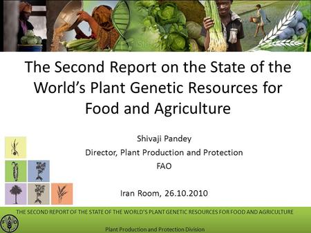 The Second Report on the State of the World's Plant Genetic Resources for Food and Agriculture Shivaji Pandey Director, Plant Production and Protection.