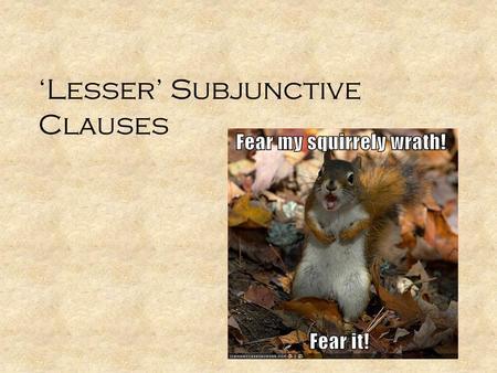 Jussive Subjunctive Latin 14