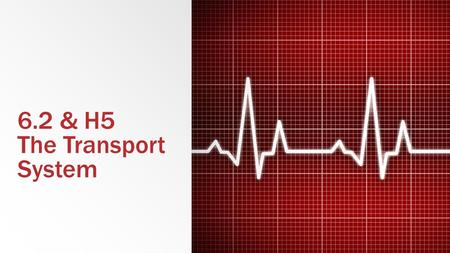 6.2 & H5 The Transport System. 6.2.1 Draw and label a diagram of the heart showing the four chambers, associated blood vessels, valves and the route of.