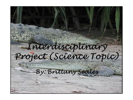 Interdisciplinary Project (Science Topic) By: Brittany Seales.
