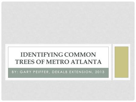 BY: GARY PEIFFER, DEKALB EXTENSION, 2013 IDENTIFYING COMMON TREES OF METRO ATLANTA.
