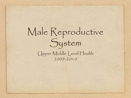 Male Reproductive System Upper Middle Level Health 2009-2010.