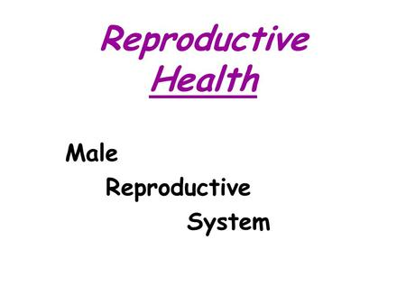 Reproductive Health Male Reproductive System.