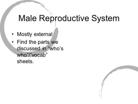 "Male Reproductive System Mostly external Find the parts we discussed in ""who's who""/""vocab"" sheets."