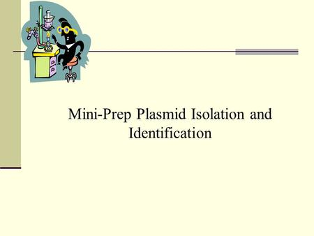 Mini-Prep Plasmid Isolation and Identification. Page 3-53 in lab manual & handout.