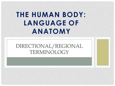 THE HUMAN BODY: LANGUAGE OF ANATOMY DIRECTIONAL/REGIONAL TERMINOLOGY.