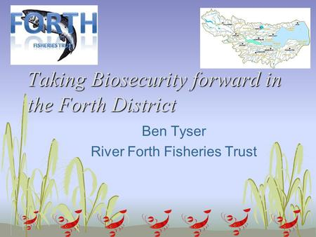 Taking Biosecurity forward in the Forth District Ben Tyser River Forth Fisheries Trust.