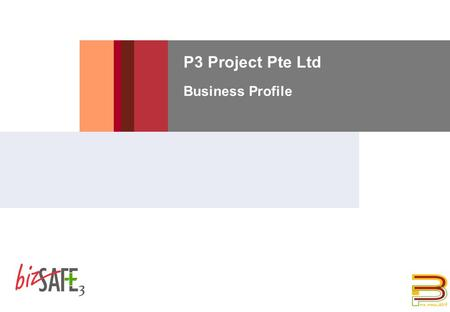 P3 Project Pte Ltd Business Profile. 8/18/2015 DUPONT CONFIDENTIAL 2 Introduction  P3 Project is a construction and engineering company which is involved.
