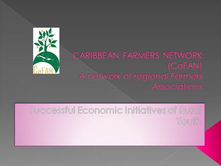  Legally registered non-profit, non- governmental regional umbrella farmer organisation.  Formed and initiated by farmer organisations across the Caribbean.