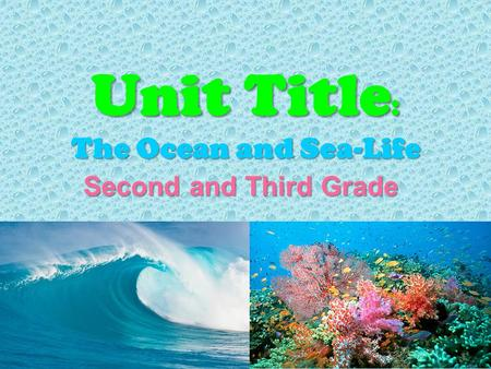 Unit Title : The Ocean and Sea-Life Second and Third Grade Second and Third Grade.