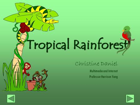 Tropical Rainforest Christine Daniel Multimedia and Internet Professor Harrison Yang.