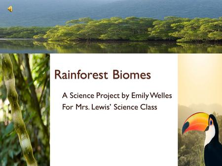 Rainforest Biomes A Science Project by Emily Welles For Mrs. Lewis' Science Class.