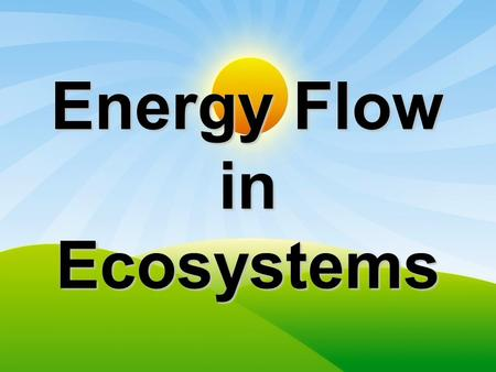 Energy Flow in Ecosystems. Components of an Ecosystem living and non-living things interact with each other in an ecosystemliving and non-living things.