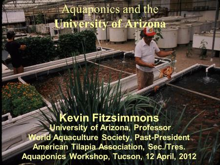 Aquaponics and the University of Arizona Kevin Fitzsimmons University of Arizona, Professor World Aquaculture Society, Past-President American Tilapia.