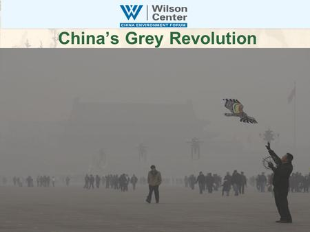 China's Grey Revolution. China Environment Forum Convener, Information Clearinghouse, Matchmaker Cooperative Competitors: Building New US-China Clean.