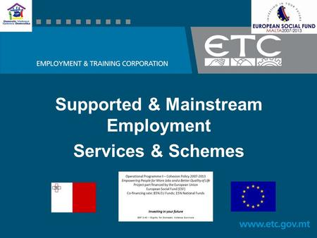 Supported & Mainstream Employment Services & Schemes.