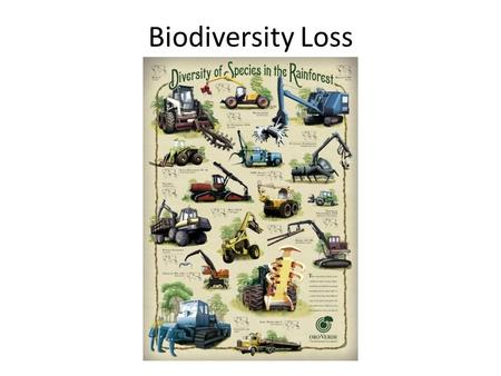 Biodiversity Loss. Case study task……… More than 50% of Earth's rain forests have already been lost Rain forests that once grew over 14 % of the land.