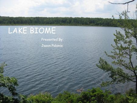 LAKE BIOME Presented By: Jason Palonis. What is a Lake? Lakes are enclosed basins which can trap standing water Another definition is a body of fresh.