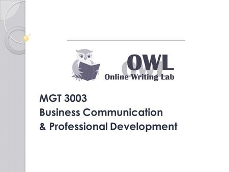 MGT 3003 Business Communication & Professional Development.