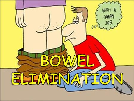 BOWEL ELIMINATION Bowel elimination is a basic physical need. It is the excretion of wastes from the digestive system. As a health care worker, you will.