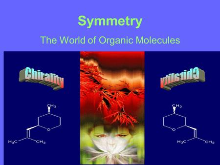 Symmetry The World of Organic Molecules. What is Symmetry?