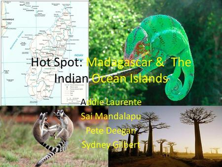 Hot Spot: Madagascar & The Indian Ocean Islands