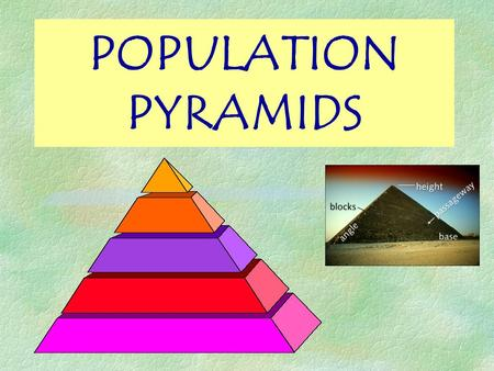 POPULATION PYRAMIDS Objectives §WHAT is a population pyramid? §HOW to read a population pyramid? §Recognise SHAPES of population pyramids. §IMPORTANCE.