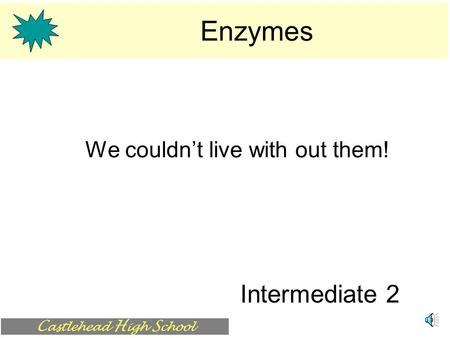 C astlehead H igh S chool Enzymes We couldn't live with out them! Intermediate 2.