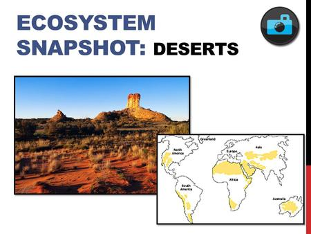ECOSYSTEM SNAPSHOT: DESERTS. FEATURED POPULATION: ROADRUNNERS.