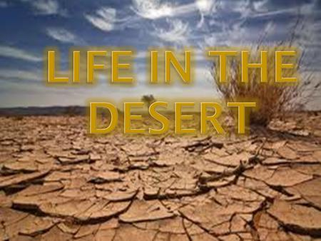 What is a desert? Deserts can be hot or cold but they are always dry. They receive less than 25 cm of precipitation annually. They cover 22 million km.