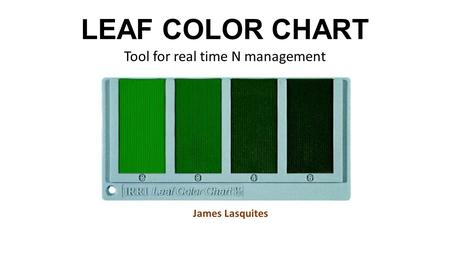 LEAF COLOR CHART Tool for real time N management James Lasquites.