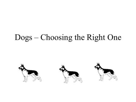 Dogs – Choosing the Right One. Early Decisions Who is going to care for Fido Housetraining Are you moving?