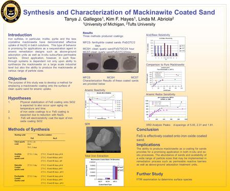 Introduction Iron sulfides, in particular, troilite, pyrite and the less crystalline mackinawite have demonstrated effective uptake of As(III) in batch.