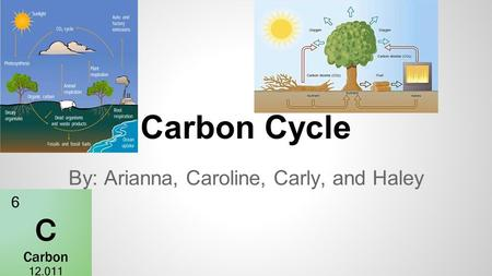 Carbon Cycle By: Arianna, Caroline, Carly, and Haley.